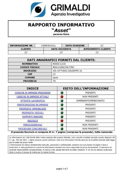 Report investigativo su persona Falco Asset